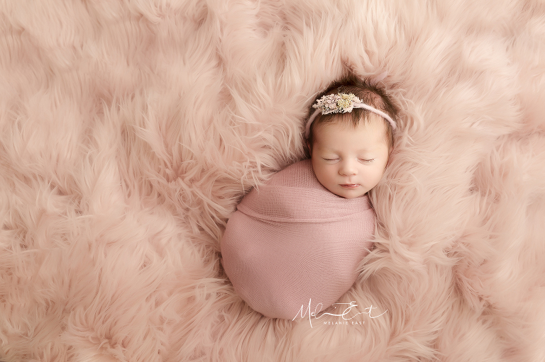 specialist newborn photography