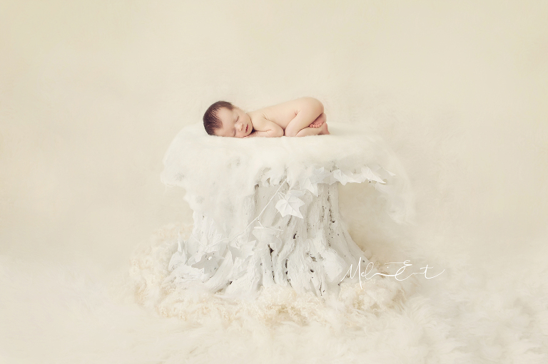 newborn photography Bristol